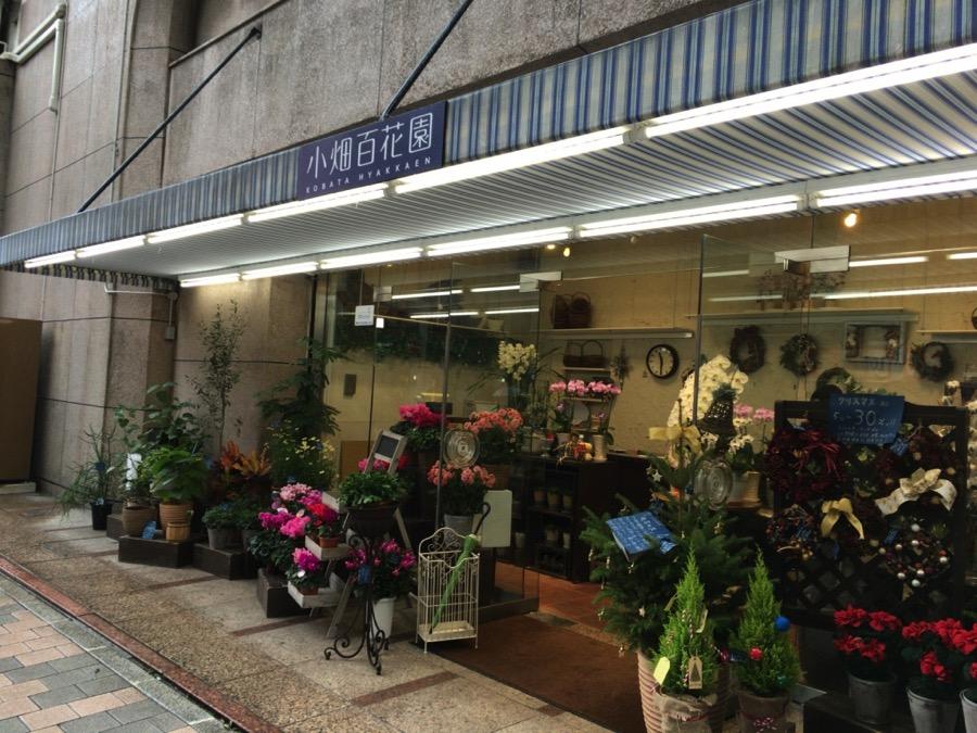 広島ひとり旅2日目ー友人と再会!そして新しいことに挑戦!2015年11月【旅ブログ】
